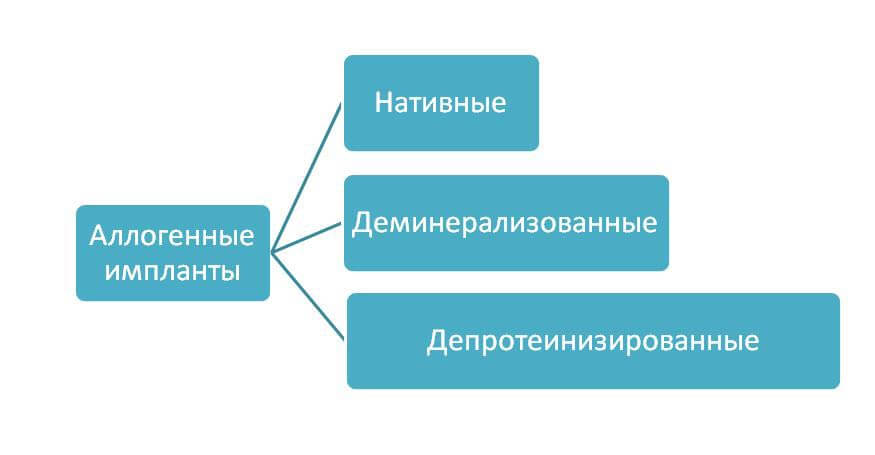 Классификация аллогенных костных материалов