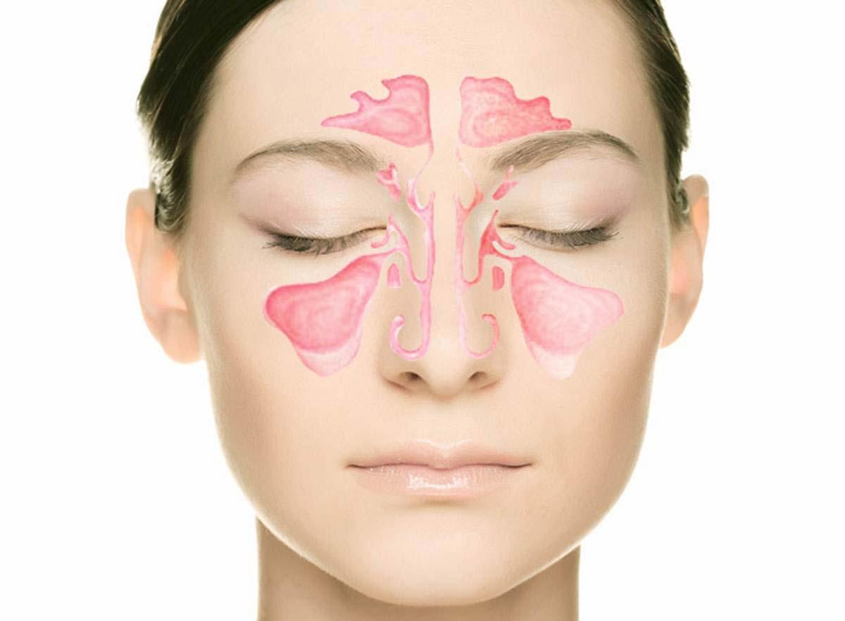 Передний отдел лицевого черепа